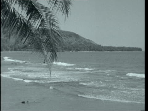 le camping / paradise lost; tahiti: general view of sea seen through palm trees / smiling tahitian girl towards as puts garland of flowers over... - insel tahiti stock-videos und b-roll-filmmaterial