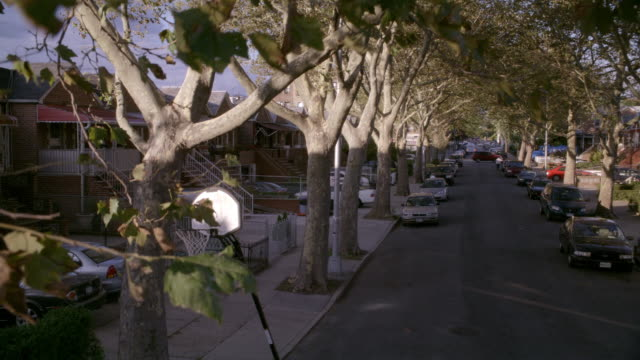 ms, cs, ha, row houses along street in brooklyn, new york city, new york, usa - tree canopy stock videos & royalty-free footage