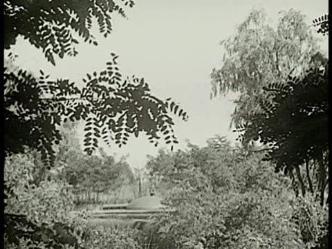 row of cannons pointing in one direction casemates trees bg. french soldier patrolling near casemate forest. cannon & barrel rows of cannons bg.... - maginot linie stock-videos und b-roll-filmmaterial