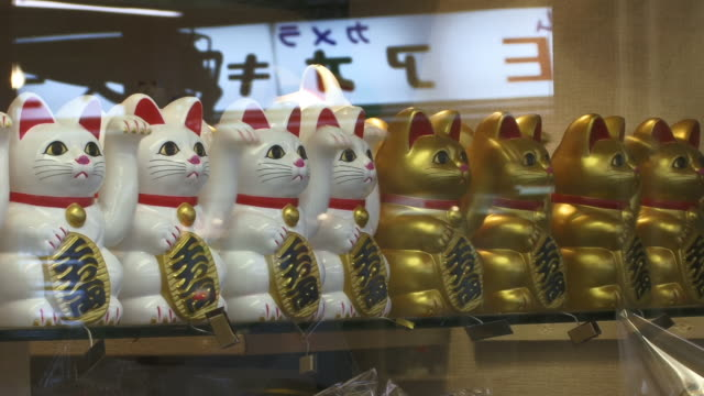 cu, row of cat figurines in gift shop, nakamisa-dori market, asakusa, tokyo, japan - conformity stock videos & royalty-free footage