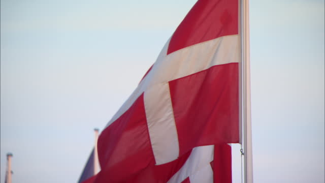 vídeos y material grabado en eventos de stock de cu td row of danish flags blowing in breeze / copenhagen, denmark - danish flag