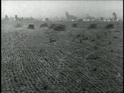 vidéos et rushes de b/w 1924 rear view pan row of driverless cars driving crazily in dusty field away from camera - 1924