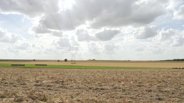 ws row of electrical towers and power lines in agricultural setting in summer heat / orleans, central france, france - aquitaine stock-videos und b-roll-filmmaterial