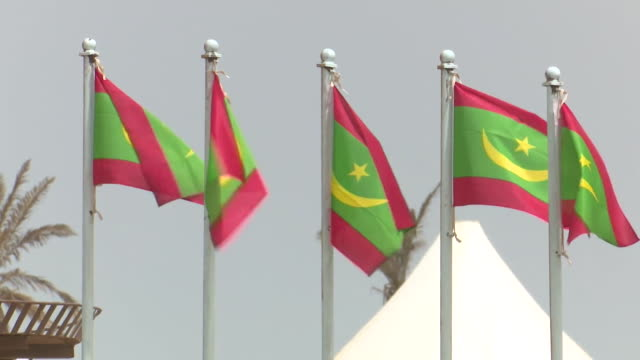 row of flags of mauritania flying - mauritania stock videos & royalty-free footage