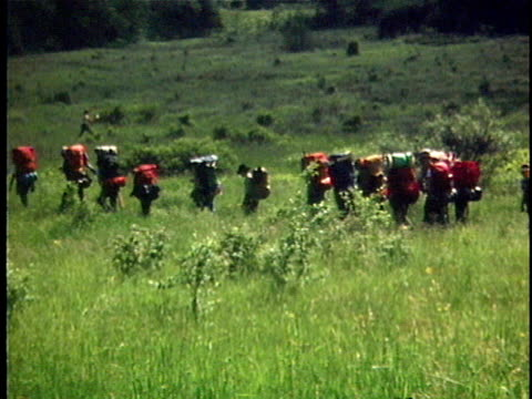 1976 WS PAN Row of hikers crossing field, rear view, Vermont, USA