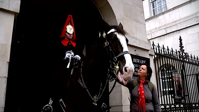 row over use of armed troops on horse guards parade england london ext tourists and onlookers outside horse guards parade building woman stroking... - horse guards parade stock videos and b-roll footage