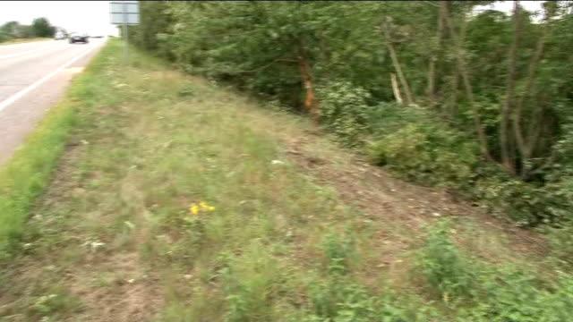 rowan atkinson crashes his sports car cambridgeshire near peterborough roadside verge and damaged trees - ローワン アトキンソン点の映像素材/bロール