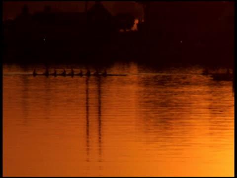 rowboats silhouetted in golden sunset / sunrise - letterbox format bildbanksvideor och videomaterial från bakom kulisserna