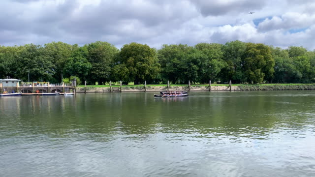 rowers training on river thames - river thames stock videos & royalty-free footage
