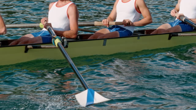 slo mo ts rowing athletes moving the oars through the water - scull stock videos & royalty-free footage