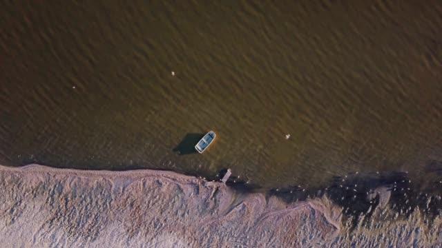 rowing boat moored in lake shallows - drone shot - faglia di sant'andrea video stock e b–roll