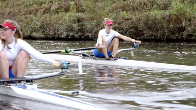 rowing club - rowing stock videos & royalty-free footage