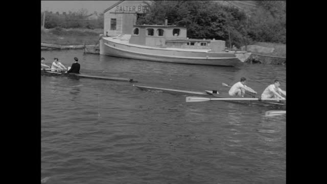 montage a rowing competition at oxford university / oxford, england - oxford england stock videos and b-roll footage
