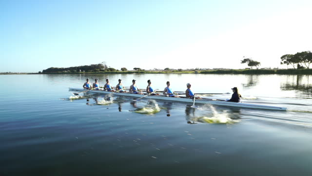 rowing eight team training on a lake at sunrise - kooperation stock-videos und b-roll-filmmaterial