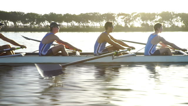 rowing eight team training on a lake at sunrise - rowing stock videos & royalty-free footage