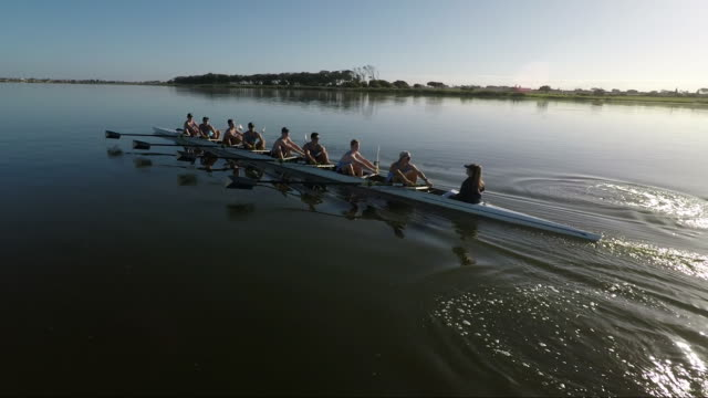 rowing eight team training on a lake at sunrise - competitive sport stock videos & royalty-free footage