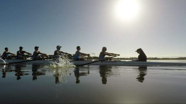 rowing eight team training on a lake at sunrise - チームワーク点の映像素材/bロール