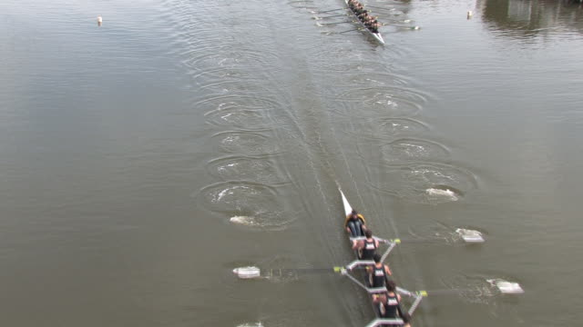 hd rowing race from overhead - rowing stock videos & royalty-free footage