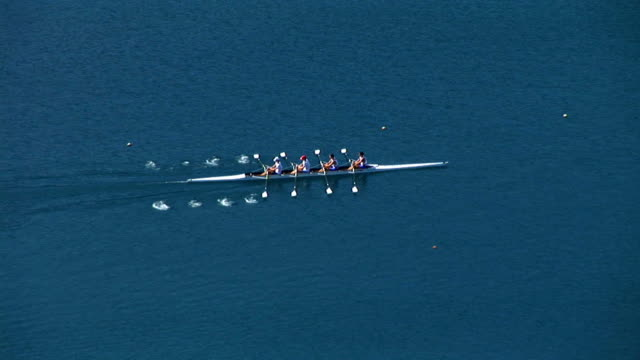 hd: rowing team - oar stock videos & royalty-free footage