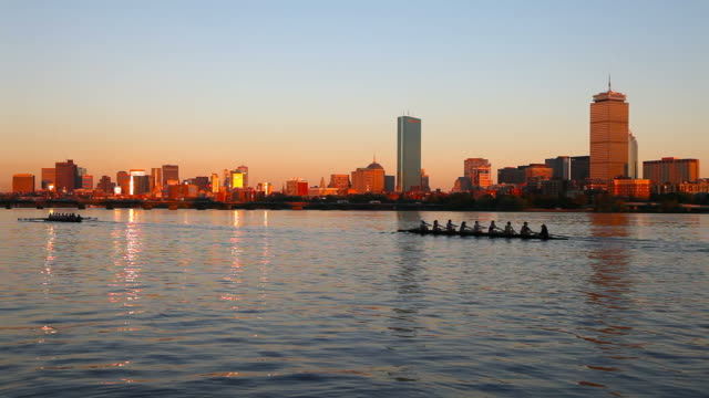 rowing the charles river, boston - back bay boston stock videos & royalty-free footage