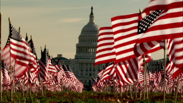 rows of american flags decorate the lawn of the national mall near the u.s. capitol building. available in hd. - governo video stock e b–roll
