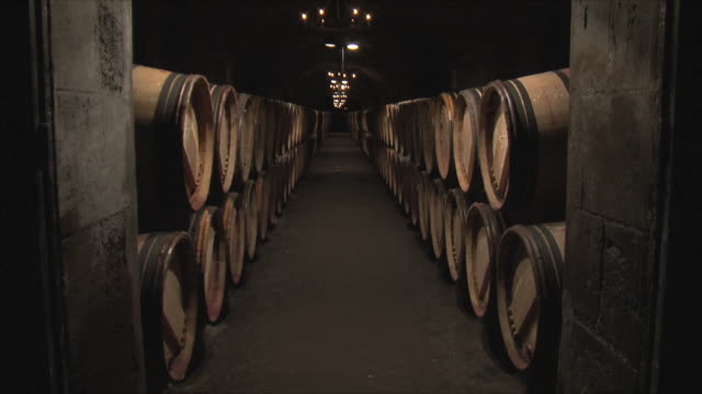 WS Rows of barrels in cellar / Bordeaux, Gironde, France