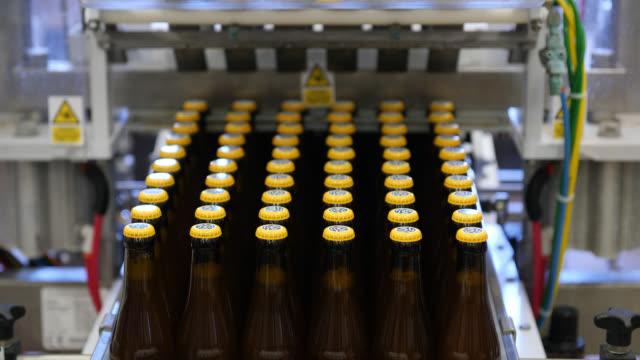 vidéos et rushes de rows of beer bottles are filled and capped on a bottling machine - bouteille de bière