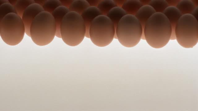 vídeos de stock e filmes b-roll de cu, tu, rows of brown eggs against white background - enfoque de objeto sobre a mesa