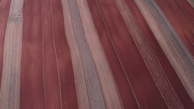 rows of cultivated farmland filmed by drone, teruel, spain - tidy stock videos & royalty-free footage