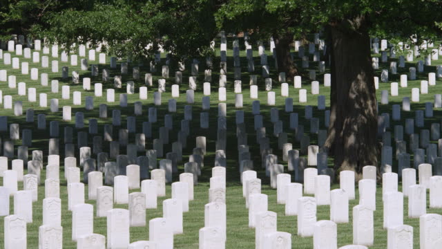 Rows of government-issued grave markers in Arlington National Cemetery, Virginia. Shot in May 2012.
