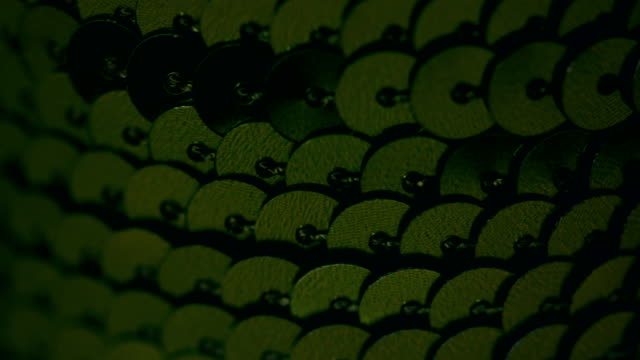 Rows of green sequins