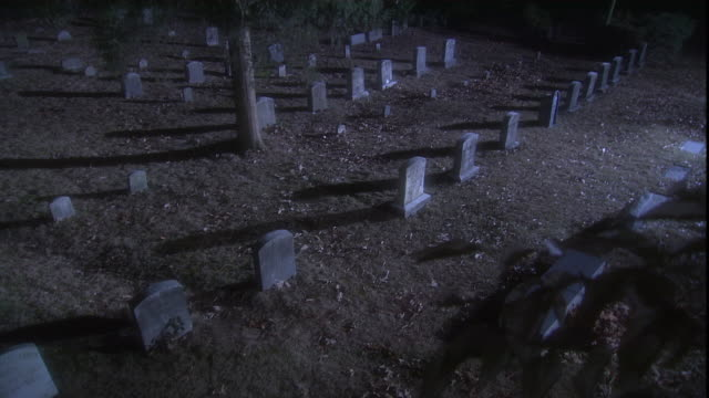 rows of headstones cast shadows in a cemetery. - friedhof stock-videos und b-roll-filmmaterial