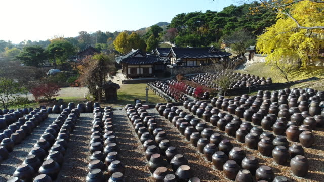 rows of jang doks (korean crocks of sauces and condiments) in autumn / myeongjae residence, nonsan, south korea - fermenting stock videos and b-roll footage