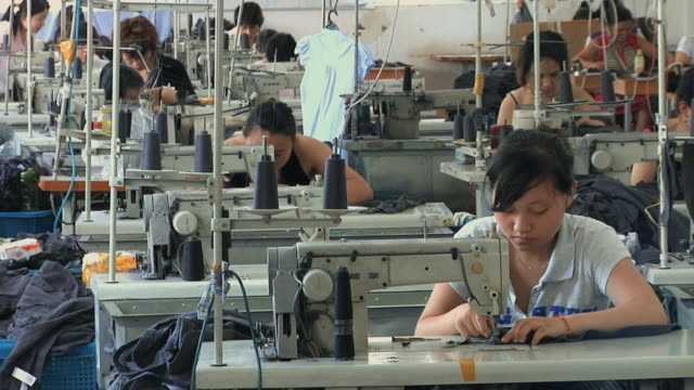MS Rows of people at sewing machines in clothing factory / Ningbo, Zhejiang, China