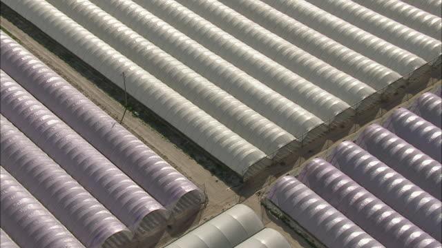 aerial zi rows of  plastic greenhouses, stellenbosch, western cape, south africa - stellenbosch 個影片檔及 b 捲影像