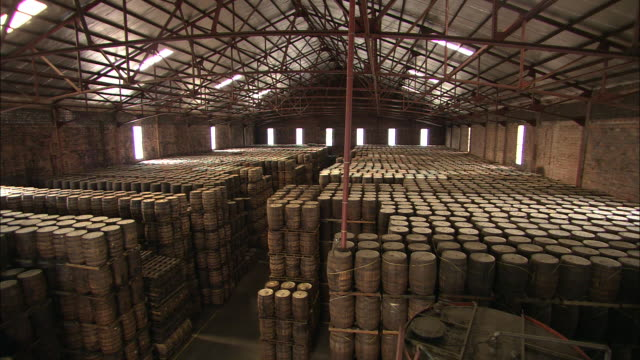 rows of stacked rum barrels fill a storehouse. - rum stock videos and b-roll footage
