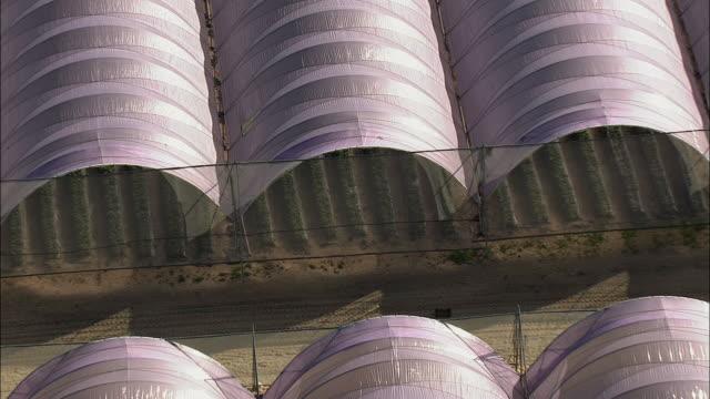 aerial zo rows of strawberries ripening in greenhouses, stellenbosch, western cape, south africa - グリーンハウス点の映像素材/bロール