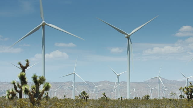 rows of turbines at desert wind farm - yucca brevifolia stock videos & royalty-free footage