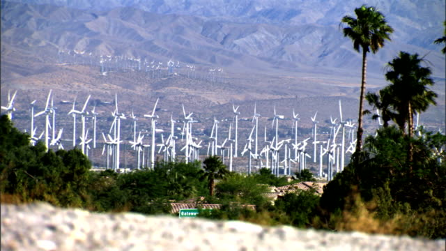 XWS Rows rows of wind turbine on fields in distance turning palm trees around Wind generator wind charger electricity green alternative energy Mother...