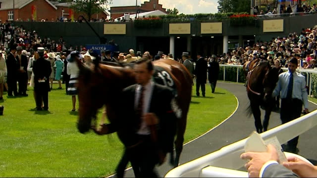 royal ascot: racegoers observing strict dresscode / philip treacey interview; woman wearing yellow hat / man in top hat / various of horses led along... - enclosure stock videos & royalty-free footage