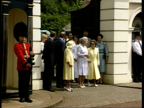 royal family popularity: new poll; 22.34: u'lay lib england: london: clarence house: ext gv royal family posing for photocall outside gates to... - ちやほや点の映像素材/bロール