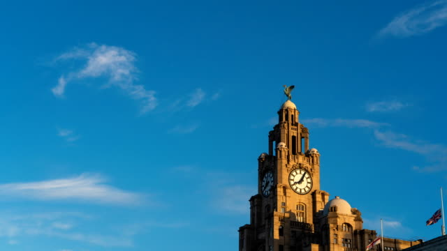 t/l royal liver building liverpool clock tower, england, uk - statue stock videos & royalty-free footage