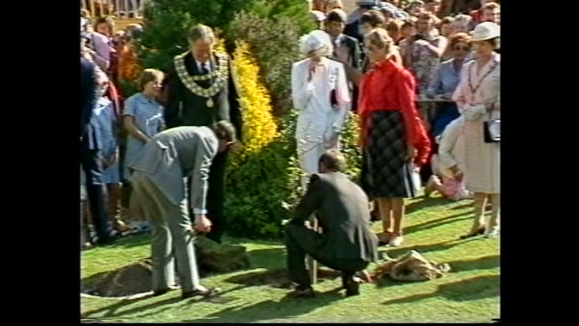 vídeos y material grabado en eventos de stock de royal tour tasmania - vs crowd / princess diana and prince charles meet and greet with the crowd / vs tree planting ceremony with prince charles &... - 1983