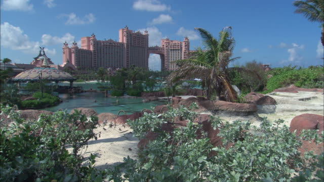 vidéos et rushes de zo royal towers resort hotel and surrounding pool and tropical greenery / nassau, bahamas - bahamas
