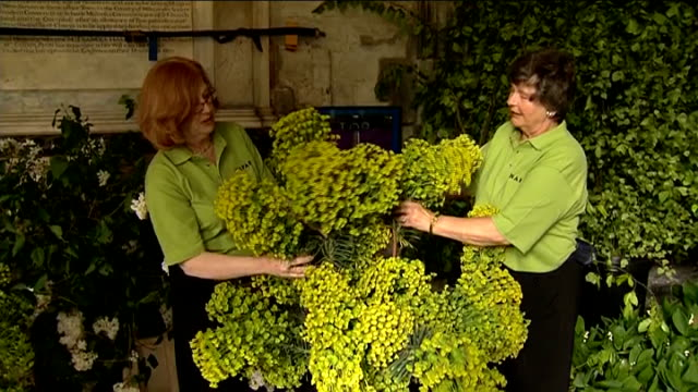stockvideo's en b-roll-footage met flowers arriving at westminster abbey cloisters various of police sniffer dog sniffing next to plants / tendercare nurseries workers arranging flower... - westminster abbey