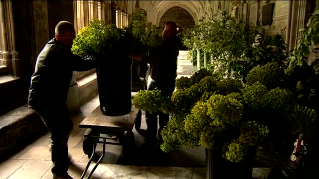 stockvideo's en b-roll-footage met guest list omissions; london: westminster abbey: int large flower displays being moved by workmen in westminster abbey corridor - westminster abbey