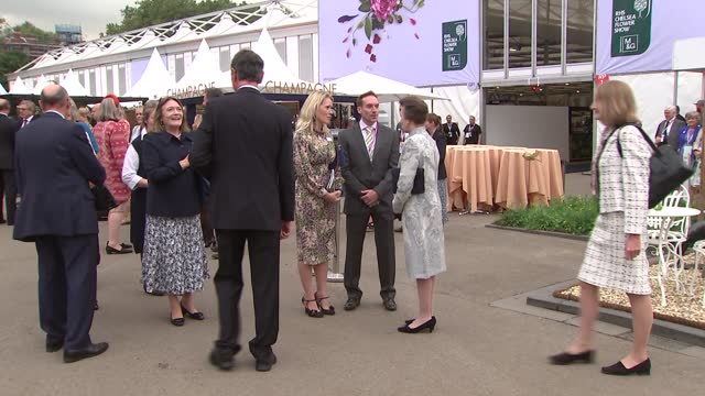 royals attend chelsea flower show; england: london: chelsea flower show: int sophie, countess of wessex chatting with sue biggs and others as touring... - royal horticultural society stock videos & royalty-free footage