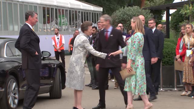royals attend chelsea flower show; england: london: chelsea flower show: ext prince edward, earl of wessex and sophie, countess of wessex chatting... - royal horticultural society stock videos & royalty-free footage