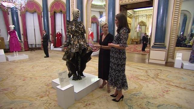 royals host london fashion week reception: interiors; england: london: buckingham palace: int catherine, duchess of cambridge meeting guests... - ブランド ステラマッカートニー点の映像素材/bロール