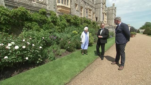 royals remember the late prince philip on his 100th birthday; england: berkshire: windsor: ext queen elizabeth ii presented with rose by rhs... - royal horticultural society stock-videos und b-roll-filmmaterial